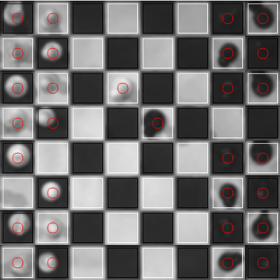 The final output, showing detected square color and piece location.